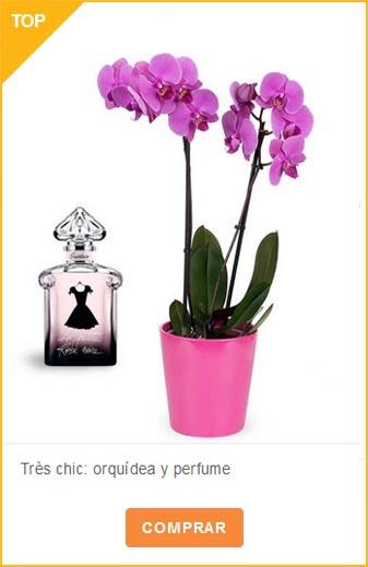 Orquidea y perfume
